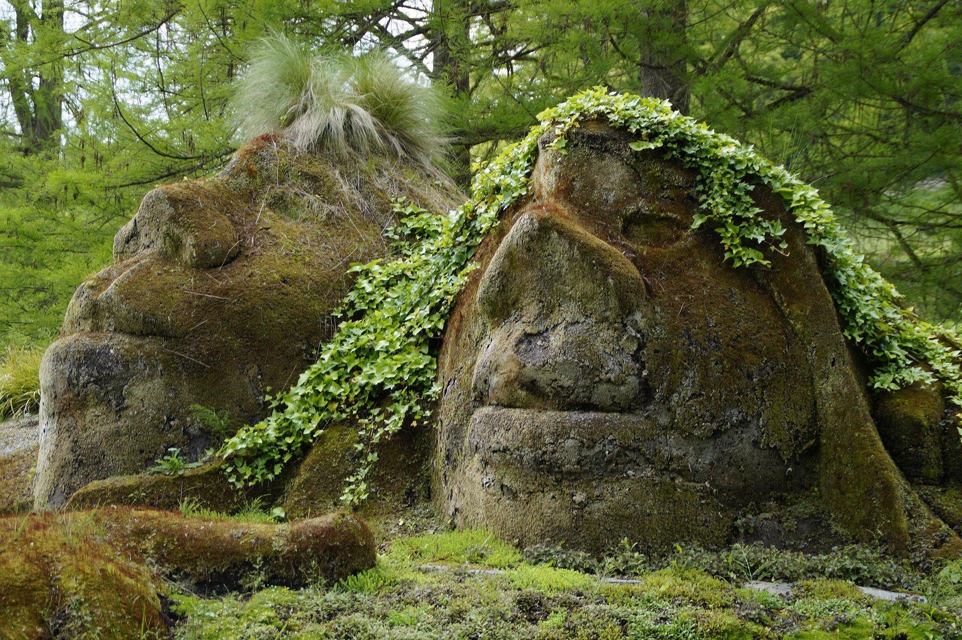 Trolle im Wald