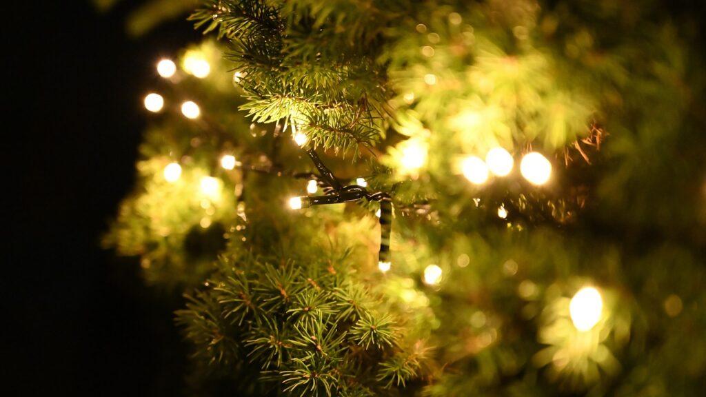 Geschmückter Weihnachtsbaum - lenbernhard / Pixabay